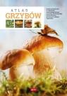 Atlas grzybów Kamiński Wiesław