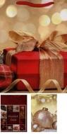 Torebka ozdobna TBN-1 Boże Narodzenie AVANTI