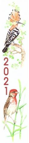 Kalendarz 2021 Paskowy Ptaki ADAM