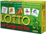 Lotto - ortografia (4126)