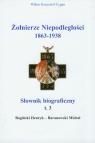 Żołnierze niepodległości 1863-1938 Tom 3 Słownik biograficzny