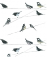 Karnet 17x14cm z kopertą Garden Birds wallpaper