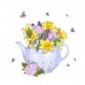 Karnet Swarovski kwadrat CL2706 Czajnik z kwiatami