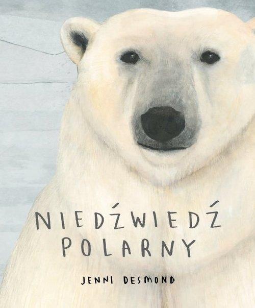 Niedźwiedź polarny Desmond Jenni