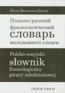 Polsko-rosyjski słownik frazeologiczny gwary młodzieżowej
