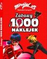 Biedronka i Czarny Kot Zabawy i 1000 naklejek