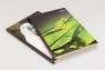 Brulion A4 Animals w kratkę 96 kartek