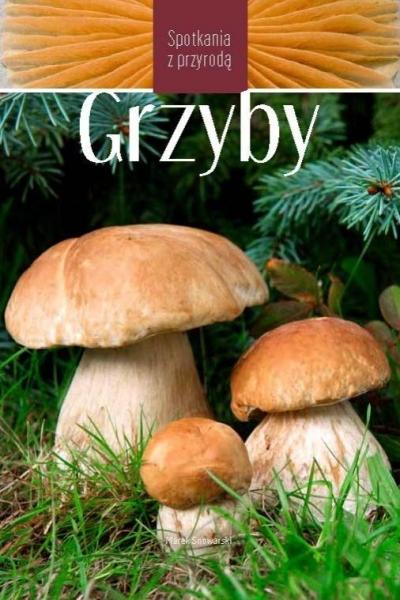 Grzyby - Spotkania z przyrodą