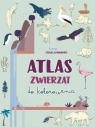 Atlas zwierząt do kolorowania Giulia Lombardo (ilustr.)