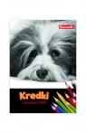 Kredki ołówkowe 12 kolorów Jumbo Cat&Dog