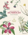Alexander von Humboldt: Botanical Illustrations 22 pull-out posters