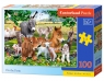Puzzle 100: On the Farm (B-111138)
