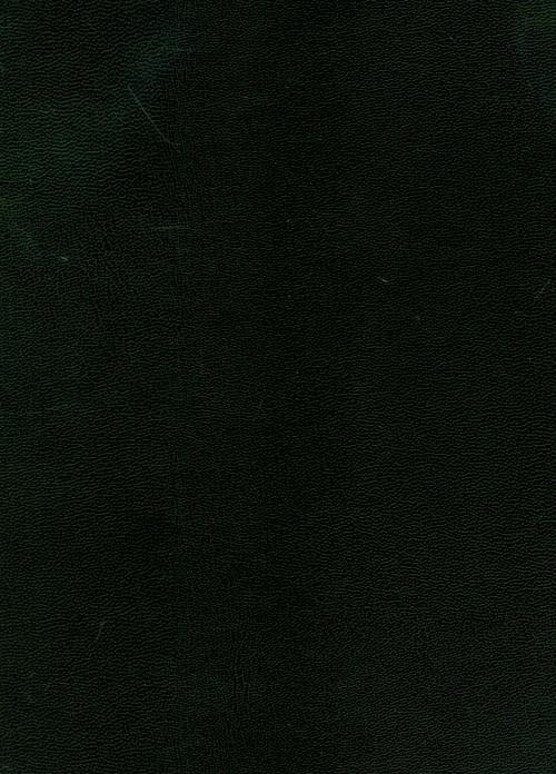 Kalendarz 2011 książkowy Seven Lima czarny