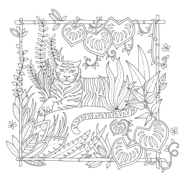 Magiczna dżungla. Koloruj i odkrywaj tajemnice tropików Basford Johanna, Basford Johanna