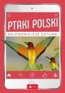 Ptaki Polski Przybyłowicz Anna, Przybyłowicz Łukasz