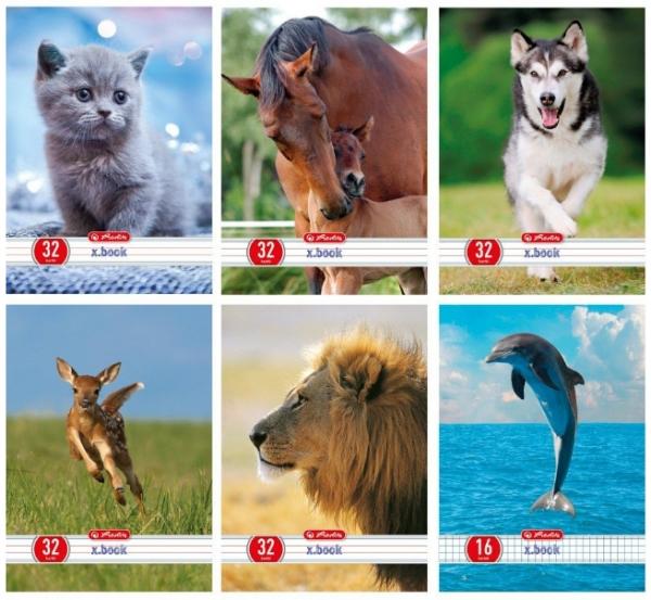 Zeszyt x.book w trzy linie dwukolorowe 32 kartki Animals