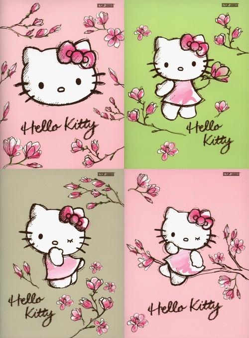Zeszyt A5 Hello Kitty Magnolia Top-2000 gładki 16 k gładki