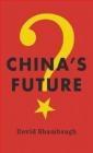 China's Future David Shambaugh