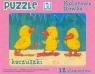 Puzzle 12 Kaczuszki
