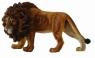 Lew afrykański L