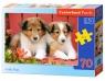 Puzzle Collie Pups 70 (007141)