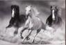 Blok rysunkowy A4, 20 kartek, koń