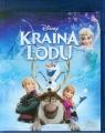 Kraina Lodu Blu-ray