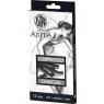 Zestaw węgli prasowanych 12 sztuk ASTRA