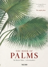 The Book of Palms Lack H. Walter