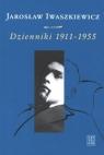 Dzienniki 1911-1955 t.1