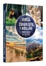 Planeta Ziemia Zwierzęta i rośliny chronione w Polsce