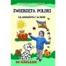 Zwierzęta Polski na podwórki i w lesie Agnieszka Wileńska