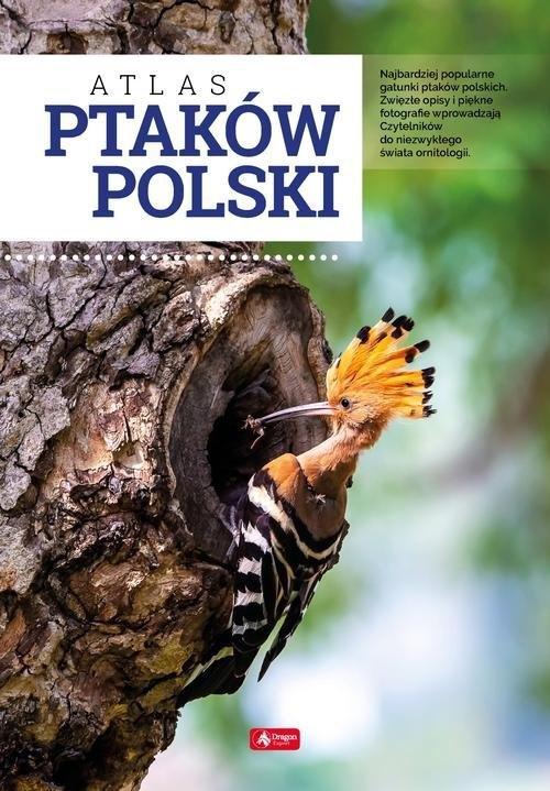 Atlas ptaków Polski Przybyłowicz Anna, Przybyłowicz Łukasz