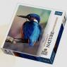 Puzzle 1000 Zimorodek Wielka Brytania Nature Limited Edition Vivid Beauty (10515)
