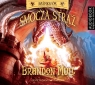 Smocza straż  (Audiobook) Mull Brandon