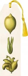 Zakładka 03 ze wstążką Cytryny