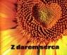 Perełka 144 - Z darem serca praca zbiorowa