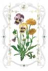 Karnet kwiaty bratki 12x18 + koperta