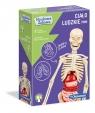 Naukowa Zabawa: Ciało ludzkie mini (50515)