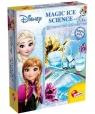 Frozen: Eksperymenty z wodą i lodem (73160)