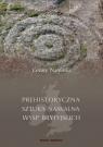 Prehistoryczna sztuka naskalna Wysp Brytyjskich Namirski Cezary