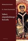 Sobory niepodzielonego Kościoła  Starowieyski Marek
