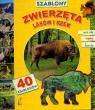 Szablony Zwierzęta lasów i rzek z 40 szablonami