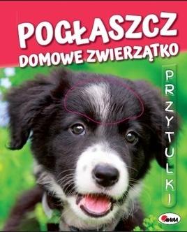 Przytulki Kawałko-Dzikowska Natalia