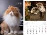 Kalendarz 2019 wieloplanszowy Koty
