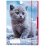 Teczka rysunkowa A4 z gumką Kot (50001590)