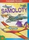 Fachowe pojazdy Samoloty