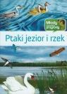 Ptaki jezior i rzek Młody obserwoator przyrody
