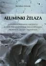 Aluminki żelaza Sekwencja przemian fazowych w procesie nieizotermicznego Jóźwiak Stanisław