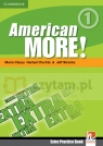 Am More! 1 Extra Practice Book